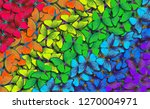Stock photo colors of rainbow pattern of multicolored butterflies morpho texture background multicolored 1270004971