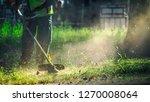 the gardener mows weeds. small... | Shutterstock . vector #1270008064