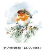 Watercolor Bird Robin On The...