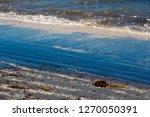 dark mineral ilmenite... | Shutterstock . vector #1270050391