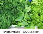 fresh herbs in the market | Shutterstock . vector #1270166284