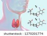 molecules of thyroid hormones... | Shutterstock . vector #1270201774