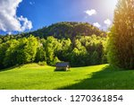 Stock photo secluded cabin in the woods mountain log cabin surrounded by trees and grass 1270361854