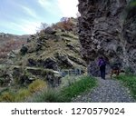 Stock photo walker on the mountain with a boxer dog 1270579024