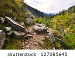Mountain Path In Valley In The...