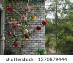 miscellaneous home and garden... | Shutterstock . vector #1270879444