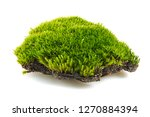 Green Moss Is Isolated On A...