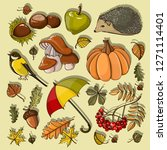 autumn collection of elements... | Shutterstock . vector #1271114401