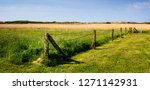 fence on a pasture in northern... | Shutterstock . vector #1271142931