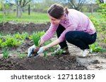 Young Woman Working In The...