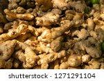 pattern of fresh turmeric in...   Shutterstock . vector #1271291104