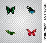 set of moth realistic symbols... | Shutterstock .eps vector #1271769931