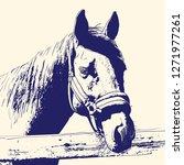 horse portrait  bridle on head  ... | Shutterstock .eps vector #1271977261