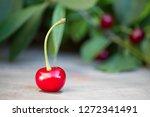 fresh red cherries on a wooden... | Shutterstock . vector #1272341491
