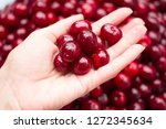 girl's hand holding a bowl of... | Shutterstock . vector #1272345634