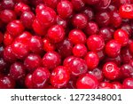 red ripe cherry   background | Shutterstock . vector #1272348001
