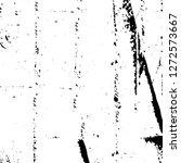 vector grunge overlay texture.... | Shutterstock .eps vector #1272573667