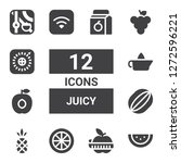 juicy icon set. collection of... | Shutterstock .eps vector #1272596221
