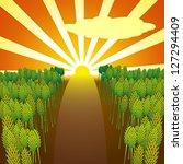 sunset over woods | Shutterstock .eps vector #127294409