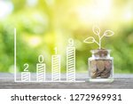 plant growing in savings coins... | Shutterstock . vector #1272969931