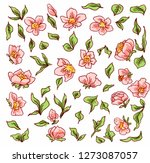 pink little flowers  suitable... | Shutterstock .eps vector #1273087057