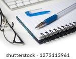 closeup of blue pen on spirales ... | Shutterstock . vector #1273113961