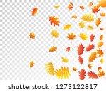 oak  maple  wild ash rowan... | Shutterstock .eps vector #1273122817