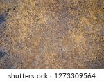 rust on old wall background    Shutterstock . vector #1273309564