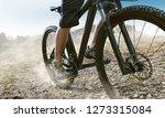 mountainbike going offroad   Shutterstock . vector #1273315084