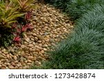 gravel footpath with the green... | Shutterstock . vector #1273428874
