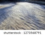 tribute to monet and ernst hass ... | Shutterstock . vector #1273568791