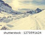 trail running through... | Shutterstock . vector #1273591624