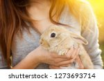 Stock photo the girl with the rabbit happy little girl holding cute fluffy bunny friendship with easter bunny 1273693714