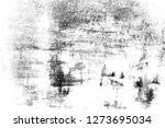 abstract background. monochrome ...   Shutterstock . vector #1273695034