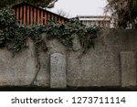 An Old Wall Of Bricks Overgrow...