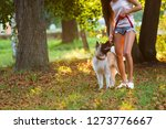 Stock photo beautiful woman playing with a dog walking in the park 1273776667