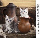 british kitten on retro... | Shutterstock . vector #127422605