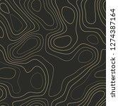 topographic contours. actual... | Shutterstock .eps vector #1274387164