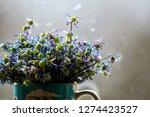 wilted blue anemones in mug in... | Shutterstock . vector #1274423527