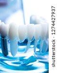 dentist dental teeth teaching... | Shutterstock . vector #1274427937