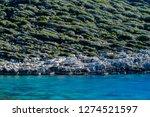 walking lycian way adventure.... | Shutterstock . vector #1274521597