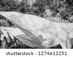 white sheets wash dry outside... | Shutterstock . vector #1274612251