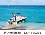 flic en flac   mauritius island ...   Shutterstock . vector #1274646391