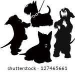 Stock vector set of silhouettes of scotch terrier isolated on white background 127465661