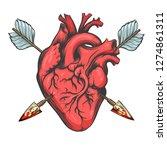 human heart pierced by two... | Shutterstock . vector #1274861311