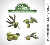 olive. hand drawn collection of ... | Shutterstock .eps vector #1274972674