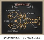 chalkboard with a diagram of... | Shutterstock . vector #1275356161