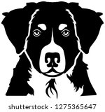 bernese mountain head black and ...   Shutterstock .eps vector #1275365647