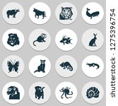 zoo icons set with butterfly ... | Shutterstock .eps vector #1275396754
