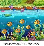 illustration of a school of... | Shutterstock . vector #127556927